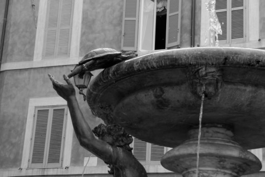 Tartarughe, Rome