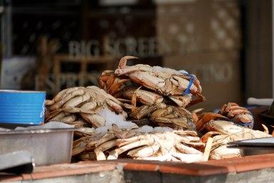 Blue crab at Fisherman's Wharf