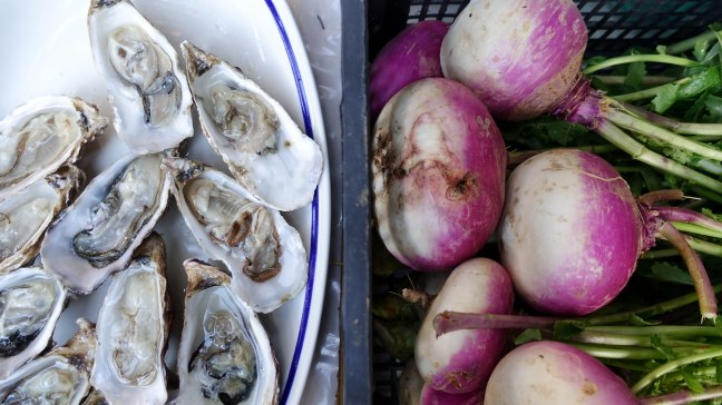 Oysters and Turnip heads